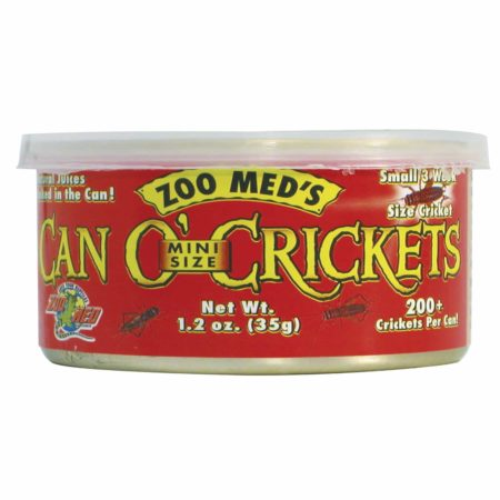 Can O Crickets - Noi