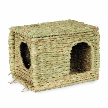 Large  Grass Hut