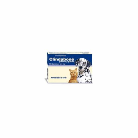CLINDABONE 165 mg - Comprimido Oral
