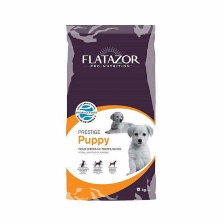 Flatazor Prestige Cachorro