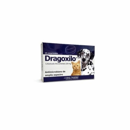 DRAGOXILO - Comprimido Oral